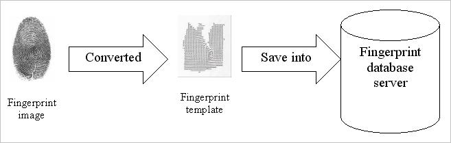 storing fingerprint template in database